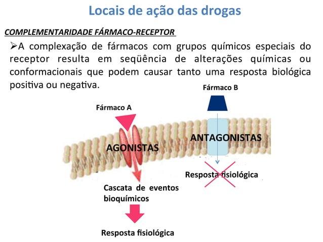 Locais  de  ação  das  drogas   COMPLEMENTARIDADE  FÁRMACO-‐RECEPTOR    ØA   complexação   de   fár...