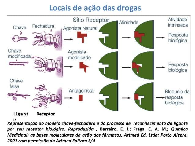 Locais  de  ação  das  drogas    Ligant Receptor   e   Representação   do   modelo   chave-‐fechadura...