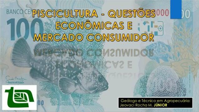 Geólogo e Técnico em Agropecuária: Jeovaci Rocha M. JÚNIOR