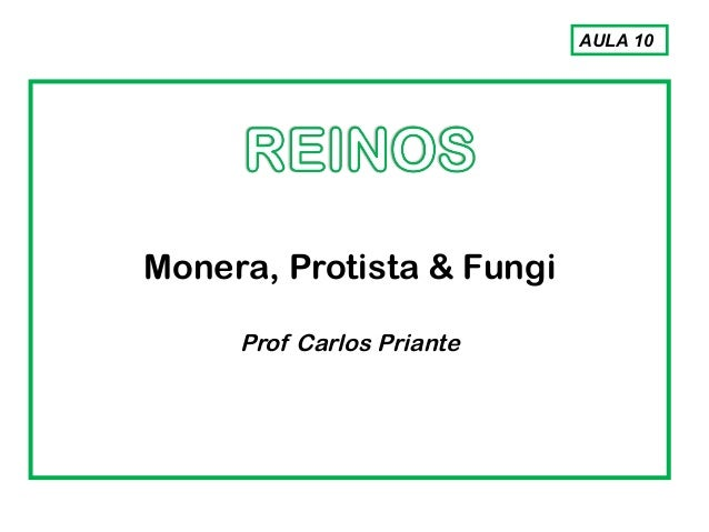 Monera, Protista & Fungi Prof Carlos Priante AULA 10