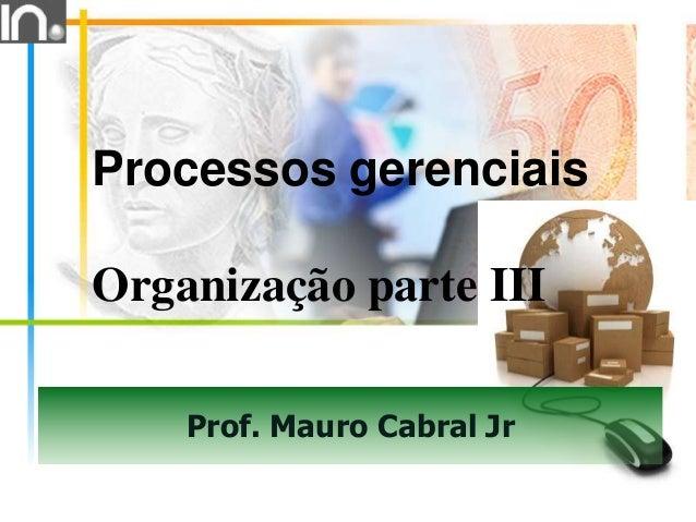 Prof. Mauro Cabral Jr Processos gerenciais Organização parte III