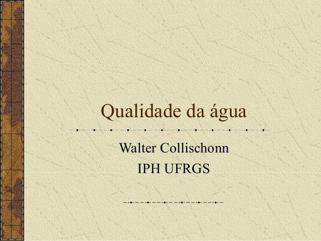 Qualidade da água  Walter Collischonn    IPH UFRGS