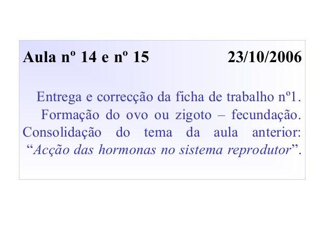 Aula nº 14 e nº 15 23/10/2006 Entrega e correcção da ficha de trabalho nº1. Formação do ovo ou zigoto – fecundação. Consol...