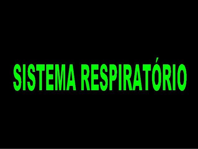 Sistema Respiratório Respiração: característica básica dos seres vivos É a absorção de oxigênio O2 e eliminação do gás car...
