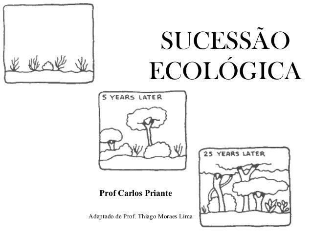 SUCESSÃO ECOLÓGICA Adaptado de Prof. Thiago Moraes Lima Prof Carlos Priante