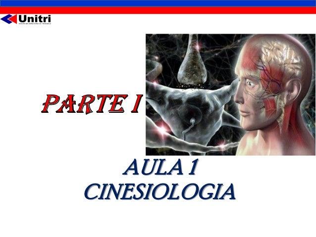 Aula1 cinesiologia2013 Slide 2