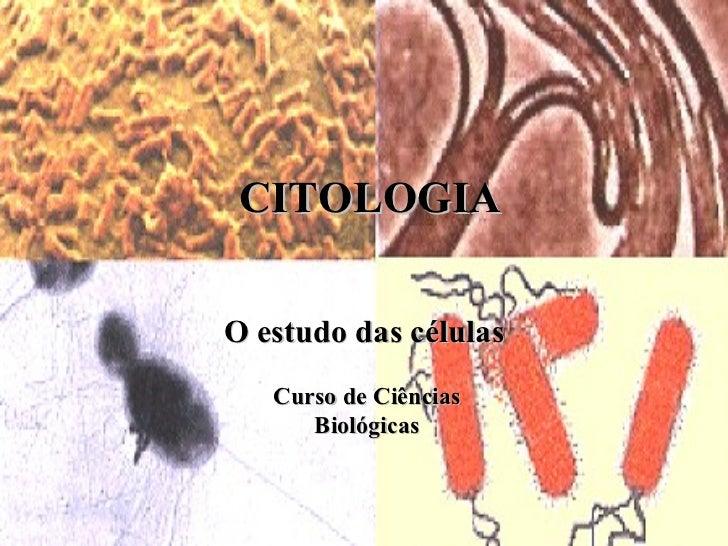 CITOLOGIA O estudo das células Curso de Ciências Biológicas