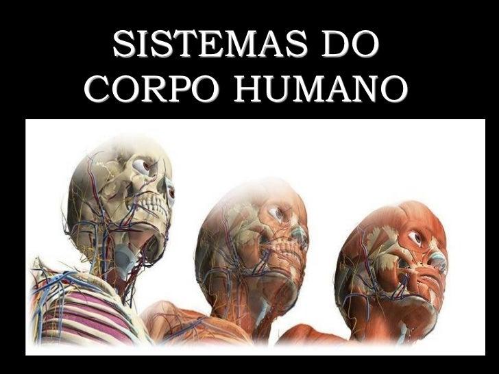 Aula 1 O corpo humano Slide 2