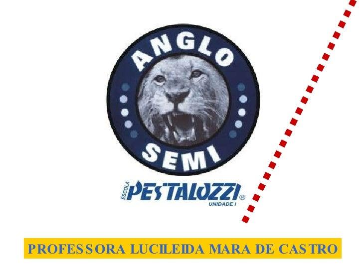 PROFESSORA LUCILEIDA MARA DE CASTRO