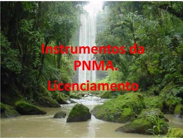 Instrumentos da PNMA. Licenciamento 12/6/2013  Marli Deon Sette - 2012  1