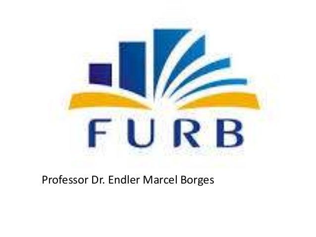 Professor Dr. Endler Marcel Borges
