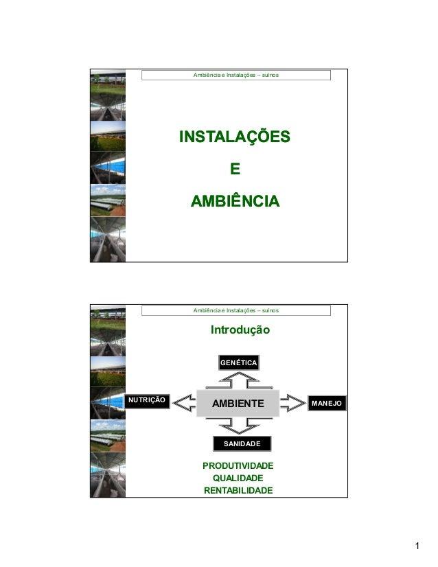 Ambiência e Instalações – suínos           INSTALAÇÕES                         E            AMBIÊNCIA            Ambiência...