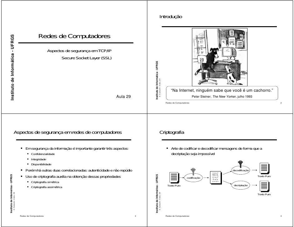 Introdução                                                                                Redes de Computadores      Insti...