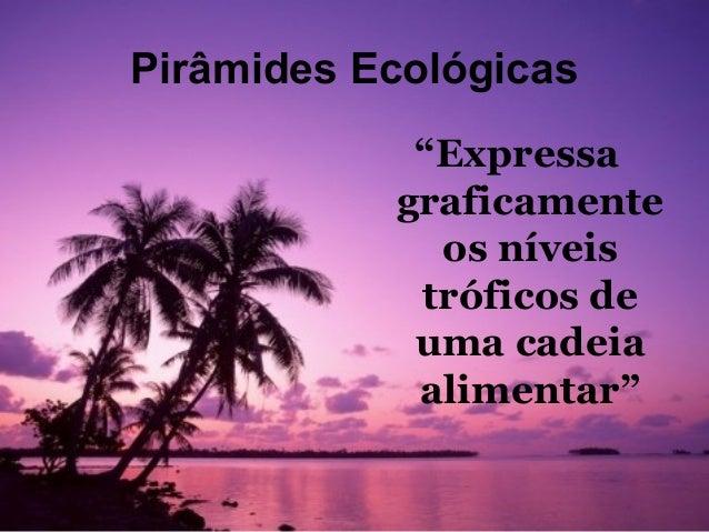 """Pirâmides Ecológicas            """"Expressa           graficamente             os níveis            tróficos de            u..."""