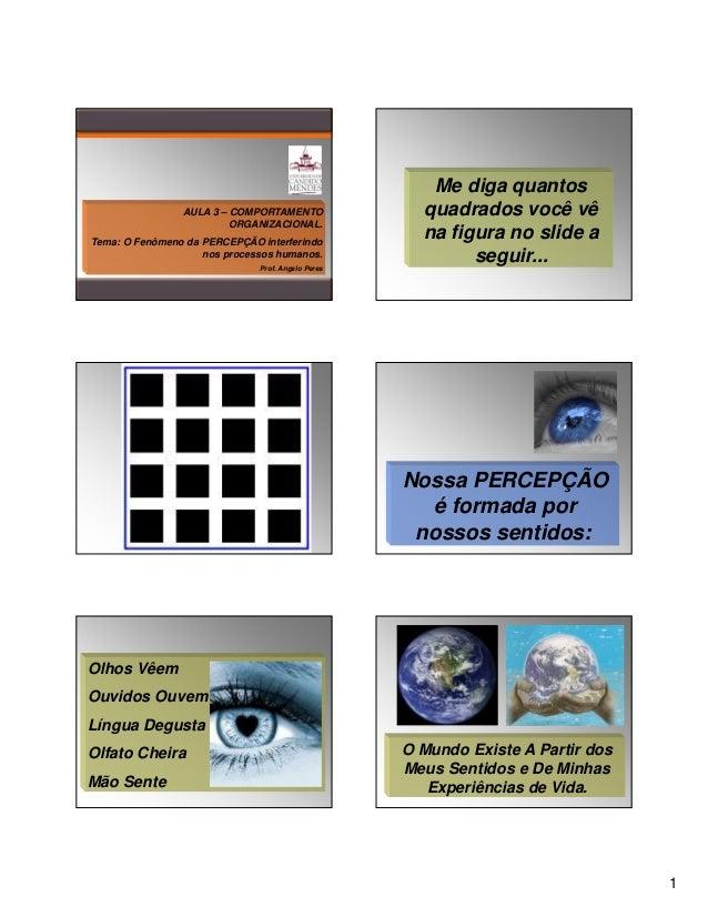 AULA 3 – COMPORTAMENTO ORGANIZACIONAL. Tema: O Fenômeno da PERCEPÇÃO interferindo nos processos humanos. Prof. Angelo Pere...