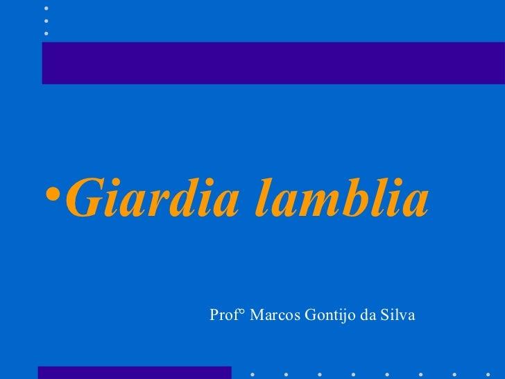<ul><li>Giardia lamblia </li></ul>Prof° Marcos Gontijo da Silva