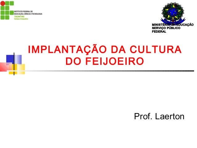 MINISTÉRIO DA EDUCAÇÃO  SERVIÇO PÚBLICO  FEDERAL  IMPLANTAÇÃO DA CULTURA  DO FEIJOEIRO  Prof. Laerton