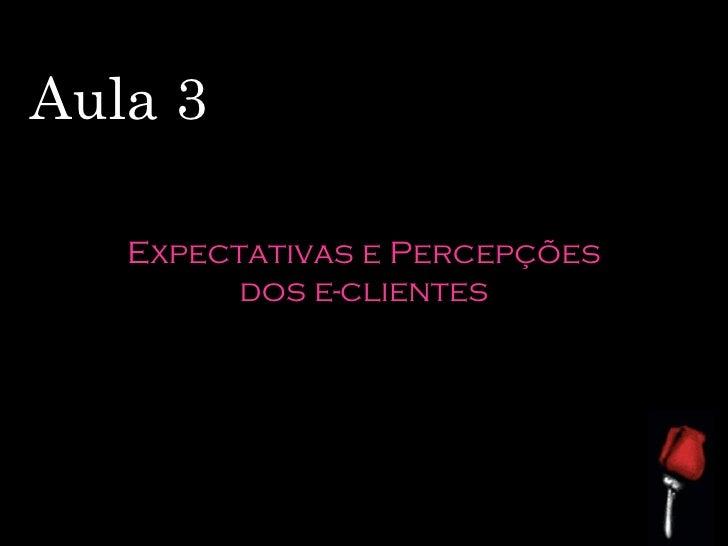 Aula 3 Expectativas e Percepções dos e-clientes