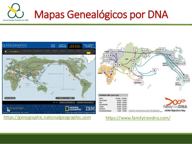 Genographic Project. Find educator resources related to human origins, ancient and modern human migrations, where our early human ancestors came from, and how genetic markers are used to reconstruct the routes by which different groups of humans migrated around the world.