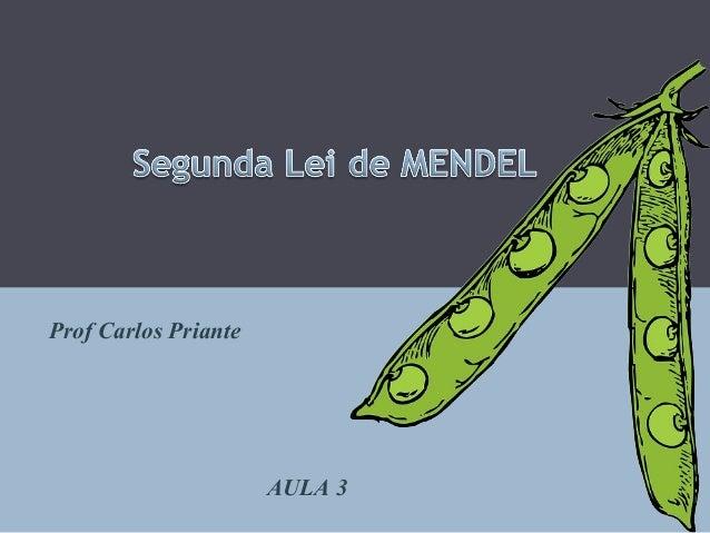 Prof Carlos Priante AULA 3