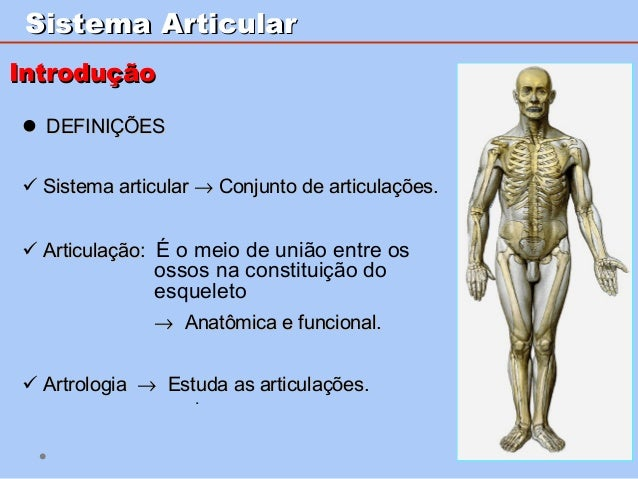 SistemaSistema ArticularArticular  DEFINIÇÕESDEFINIÇÕES  Sistema articularSistema articular →→ Conjunto de articulaçõe...