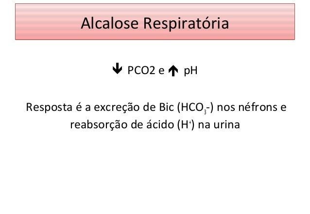 Fisiologia - Sistema Respiratório 3