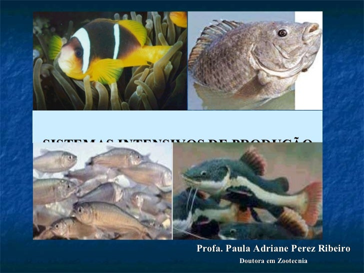 SISTEMAS INTENSIVOS DE PRODUÇÃO Profa. Paula Adriane Perez Ribeiro Doutora em Zootecnia