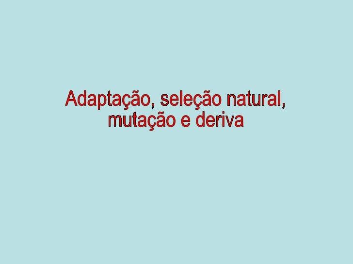 Adaptação, seleção natural, mutação e deriva