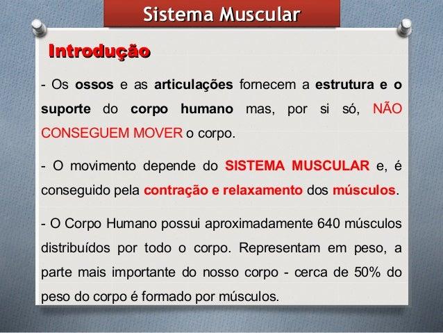SistemaSistema MuscularMuscular IntroduçãoIntrodução - Os ossos e as articulações fornecem a estrutura e o suporte do corp...