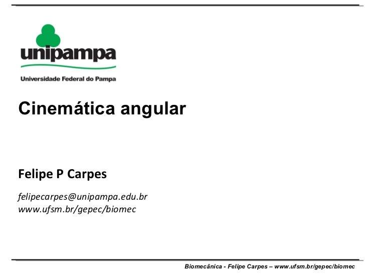 Felipe P Carpes [email_address] www.ufsm.br/gepec/biomec  Cinemática angular
