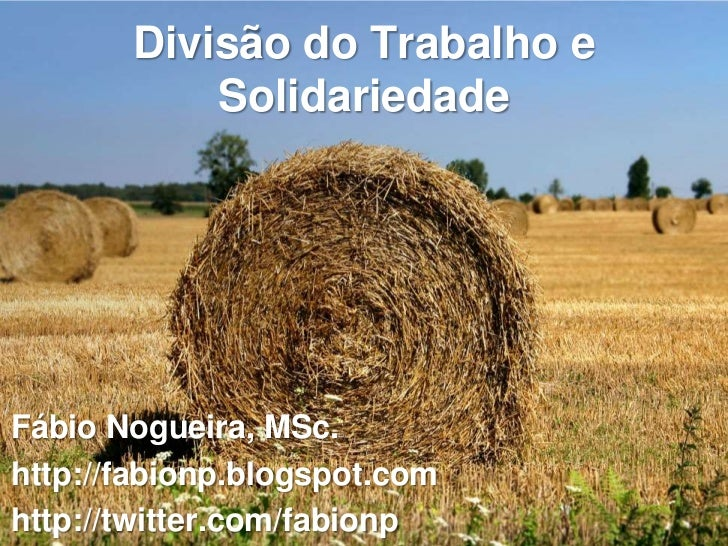 Divisão do Trabalho e           SolidariedadeFábio Nogueira, MSc.http://fabionp.blogspot.comhttp://twitter.com/fabionp