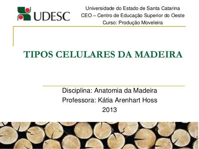 TIPOS CELULARES DA MADEIRA Disciplina: Anatomia da Madeira Professora: Kátia Arenhart Hoss 2013 Universidade do Estado de ...