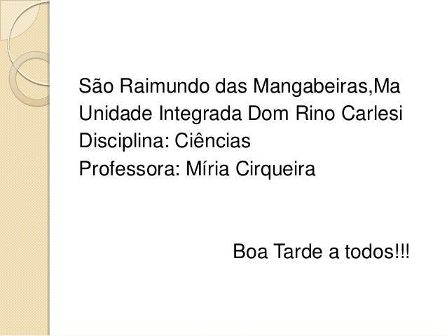 São Raimundo das Mangabeiras,Ma Unidade Integrada Dom Rino Carlesi Disciplina: Ciências Professora: Míria Cirqueira Boa Ta...