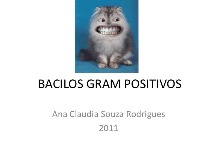 BACILOS GRAM POSITIVOS<br />Ana Claudia Souza Rodrigues<br />2011<br />