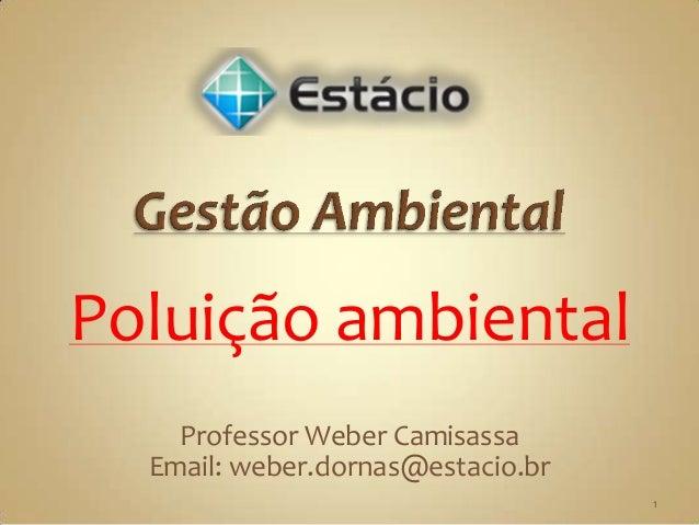 Poluição ambiental    Professor Weber Camisassa  Email: weber.dornas@estacio.br                                   1