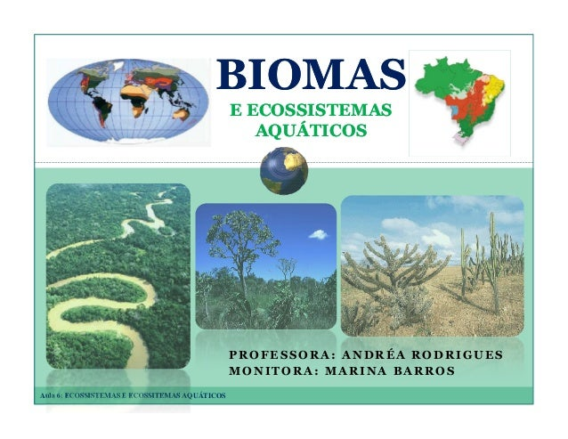 BIOMAS E ECOSSISTEMAS AQUÁTICOS  PROFESSORA: ANDRÉA RODRIGUES MONITORA: MARINA BARROS Aula 6: ECOSSISTEMAS E ECOSSITEMAS A...