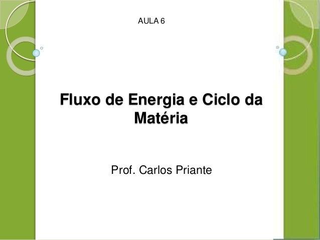 Fluxo de Energia e Ciclo da Matéria Prof. Carlos Priante AULA 6