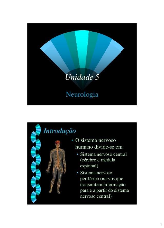 1  Unidade 5  Neurologia  Introdução  O sistema nervoso humano divide-se em:  •Sistema nervoso central (cérebro e medula ...