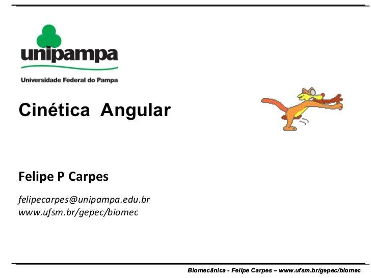 Felipe P Carpes [email_address] www.ufsm.br/gepec/biomec  Cinética  Angular