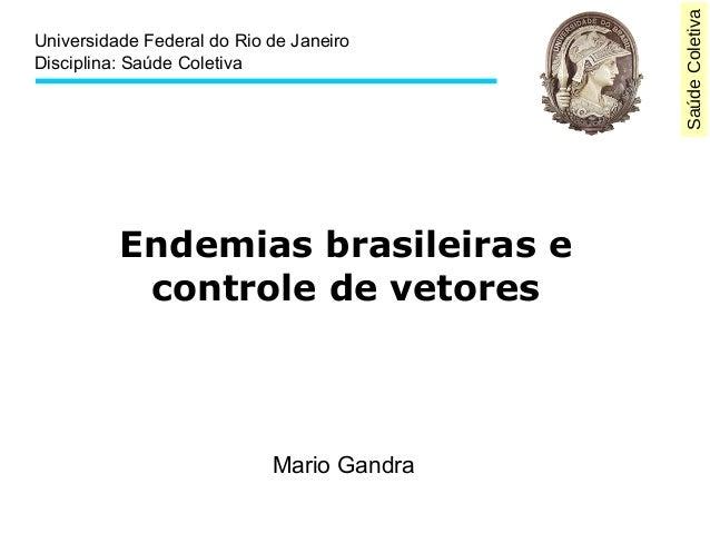 Saúde Coletiva  Universidade Federal do Rio de Janeiro  Disciplina: Saúde Coletiva  Endemias brasileiras e  controle de ve...