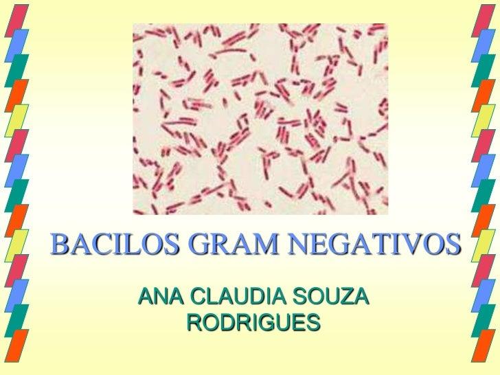 BACILOS GRAM NEGATIVOS    ANA CLAUDIA SOUZA       RODRIGUES