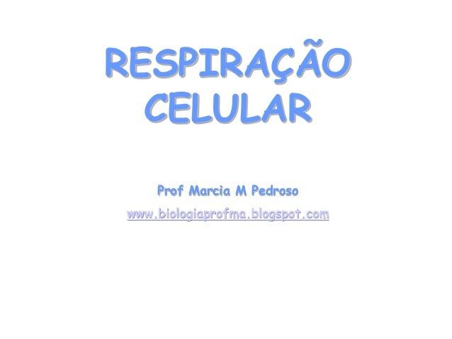 RESPIRAÇÃO CELULAR  Prof Marcia M Pedroso  www.biologiaprofma.blogspot.com