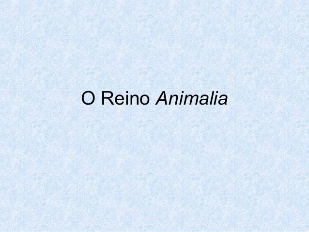 O Reino Animalia