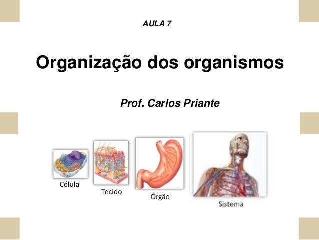 Organização dos organismos AULA 7 Prof. Carlos Priante