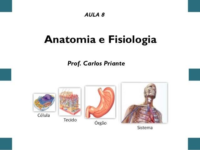 Anatomia e Fisiologia AULA 8 Prof. Carlos Priante