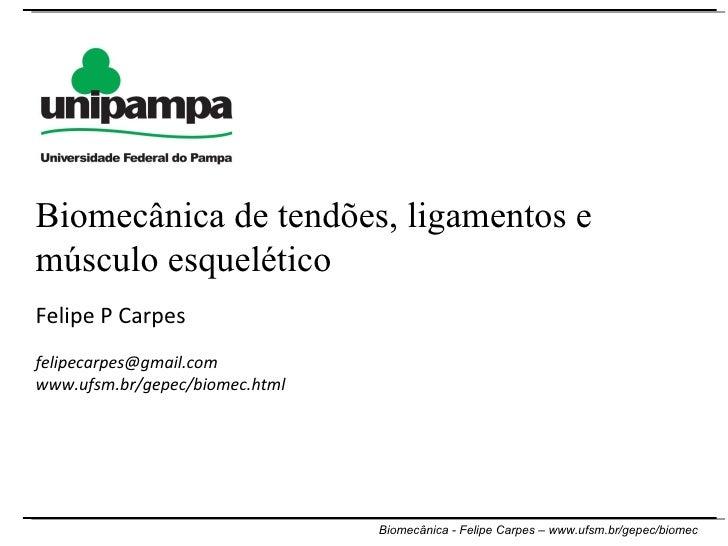 Felipe P Carpes [email_address] www.ufsm.br/gepec/biomec.html  Biomecânica de tendões, ligamentos e músculo esquelético