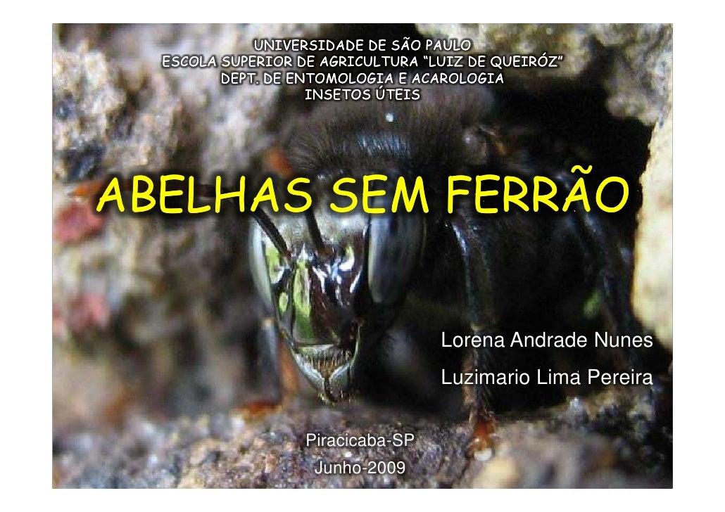 """UNIVERSIDADE DE SÃO PAULO   ESCOLA SUPERIOR DE AGRICULTURA """"LUIZ DE QUEIRÓZ""""          DEPT. DE ENTOMOLOGIA E ACAROLOGIA   ..."""