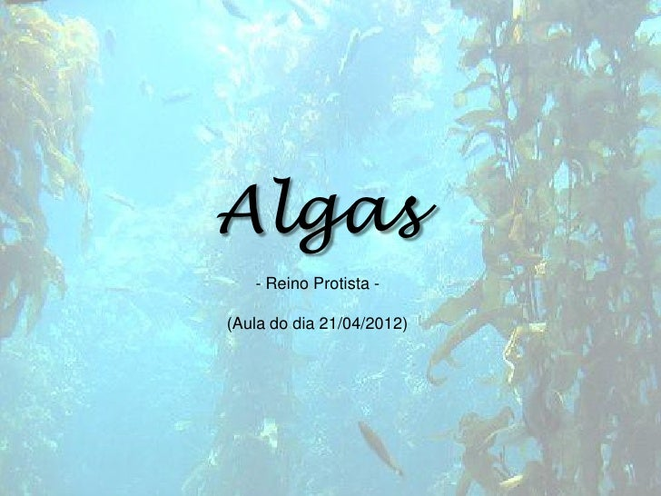 Algas   - Reino Protista -(Aula do dia 21/04/2012)