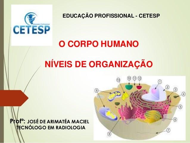 O CORPO HUMANO NÍVEIS DE ORGANIZAÇÃO EDUCAÇÃO PROFISSIONAL - CETESP Profº: JOSÉ DE ARIMATÉA MACIEL TECNÓLOGO EM RADIOLOGIA