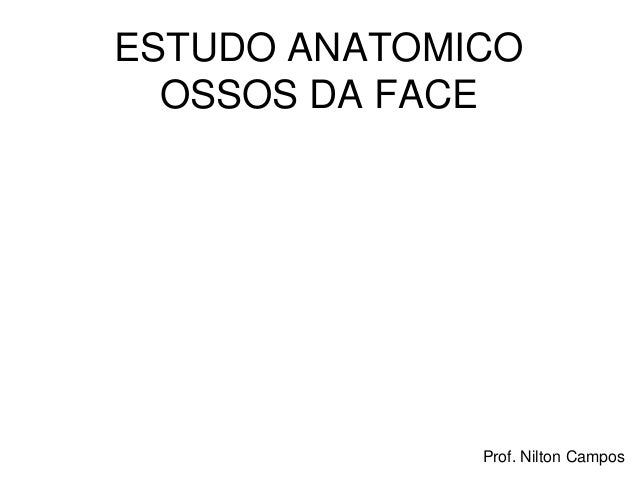 Prof. Nilton Campos ESTUDO ANATOMICO OSSOS DA FACE
